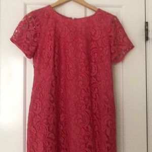 Ann Taylor Lace Shift dress - no tags, never worn